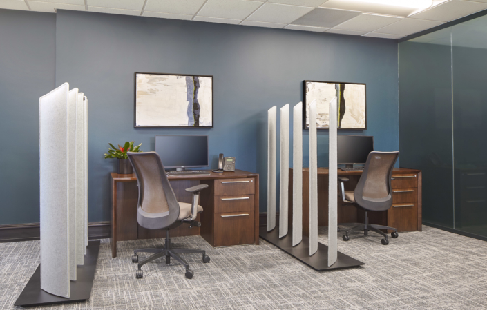 unique privacy dividers between two desks